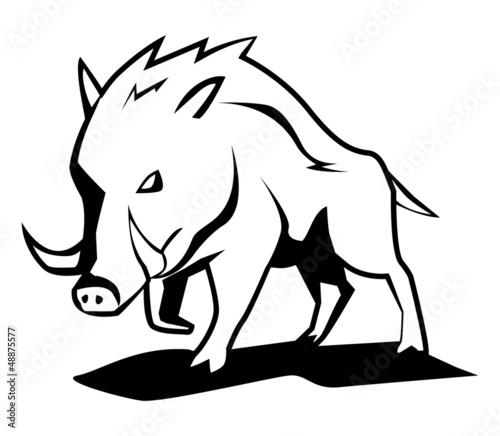Stampa su Tela wild boar