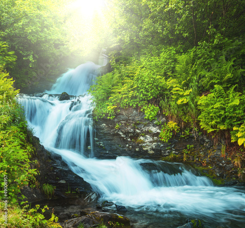 Aluminium Prints Forest river Creek in forest