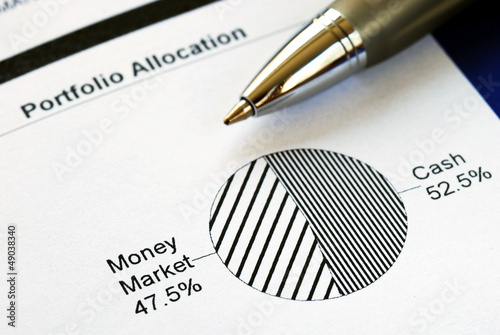 Portfolio allocation illustrates the asset in a pie chart Canvas Print