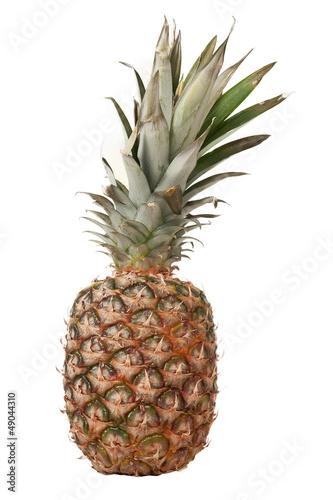 Fototapety, obrazy: Ananas
