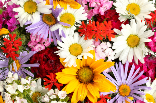 beautiful bouquet of bright  wildflowers, close up - 49066279