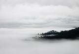Koc mgły i wzgórz - widok z lotu ptaka - 49117144