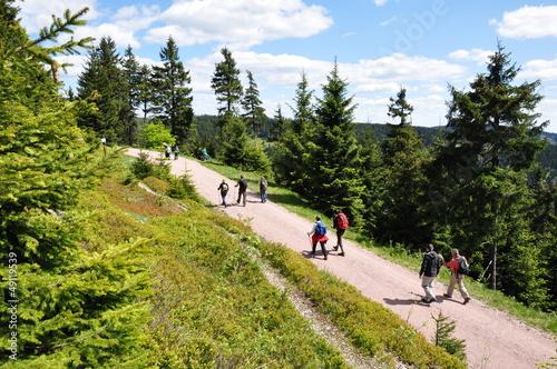 Foto  Wandern im Thüringer Wald