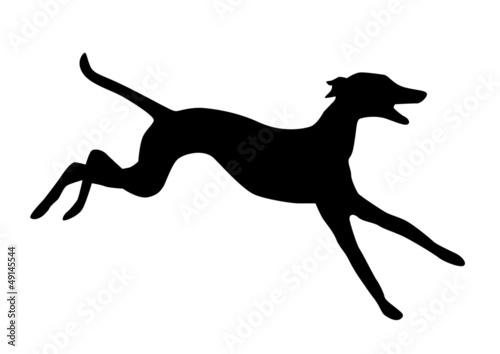 Canvas-taulu Hund