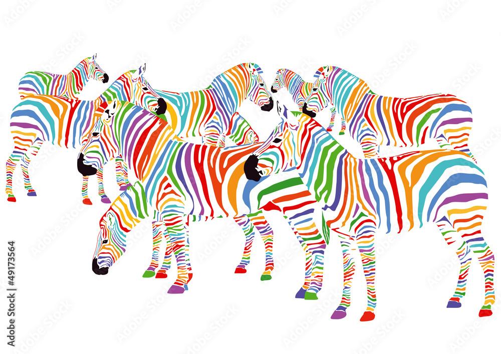 Fototapety, obrazy: Farbenfrohe Zebras