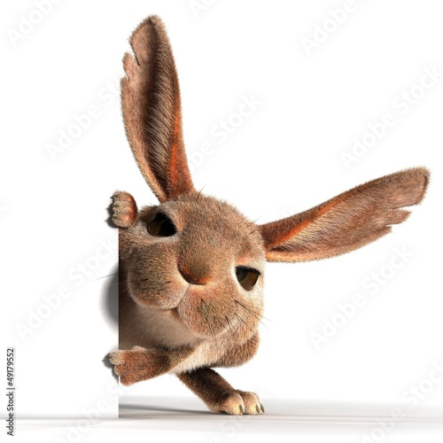 Rabbit. Point the finger at