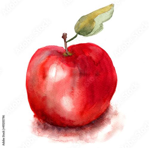 ilustracja-jablko
