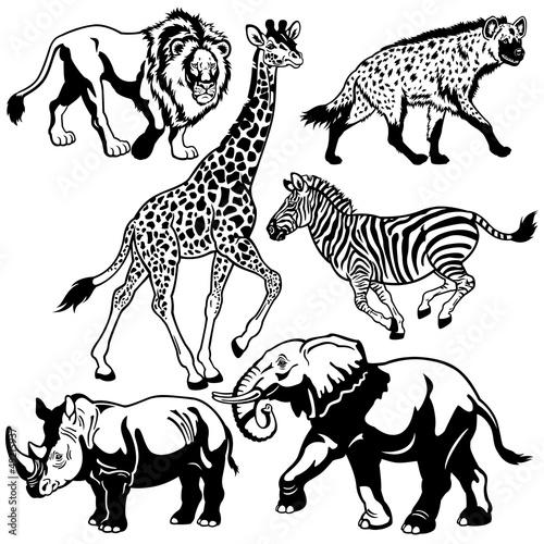 zestaw-z-afrykanskimi-zwierzetami-czarno-bialy