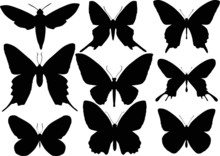 Set Of Nine Butterfly Wings Sh...