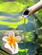 Leinwandbild Motiv Fontaine en bambou, fleur de frangipanier
