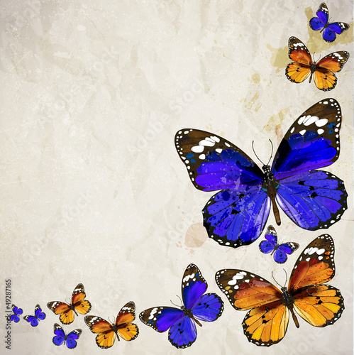 Foto op Canvas Vlinders in Grunge Colorful vintage background with butterfly. Grunge paper texture