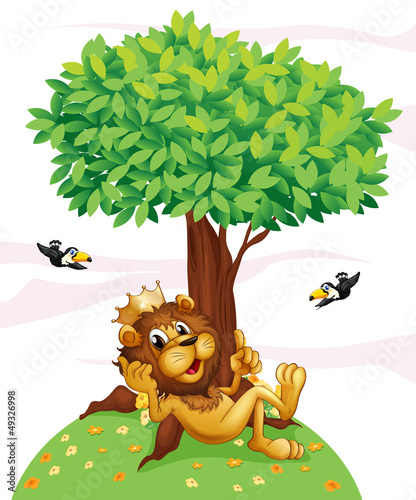 La pose en embrasure Forets enfants A king lion and the two birds