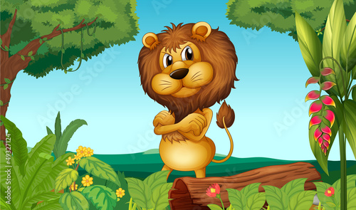 La pose en embrasure Forets enfants A lion standing in the woods