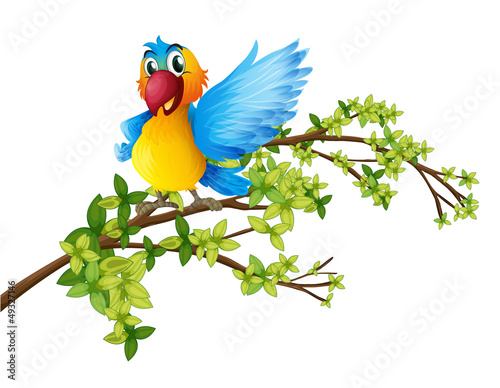 Poster Oiseaux, Abeilles A colorful parrot on a branch of a tree