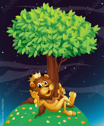 La pose en embrasure Forets enfants A king lion under a tree