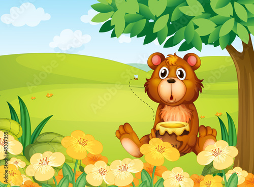 Wall Murals Bears A bear holding a pot of honey