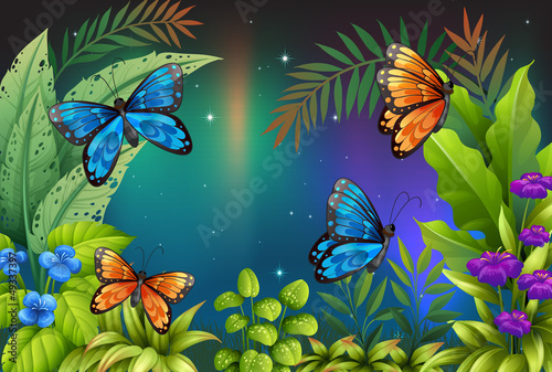 Fotobehang Vlinders Butterflies in the garden