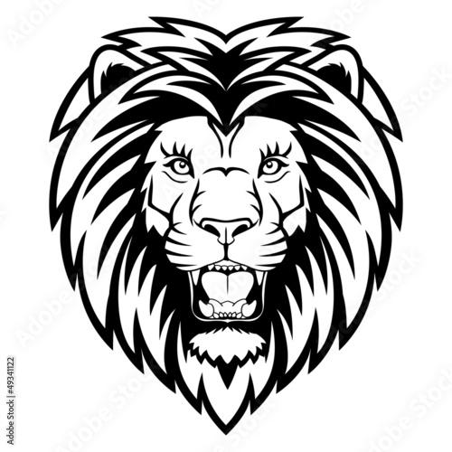 Fototapety, obrazy: Lion anger