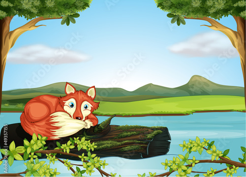 Canvas Prints River, lake A wild animal in the river
