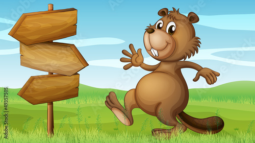 Wall Murals Bears A beaver in the hills near the wooden signboard