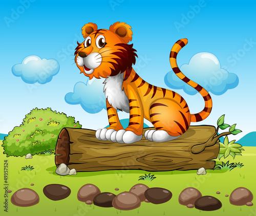 Obraz Tygrys i pień drzewa - fototapety do salonu