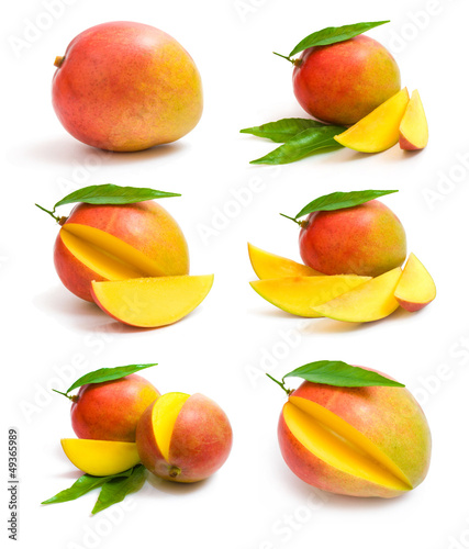 kolekcja-mango