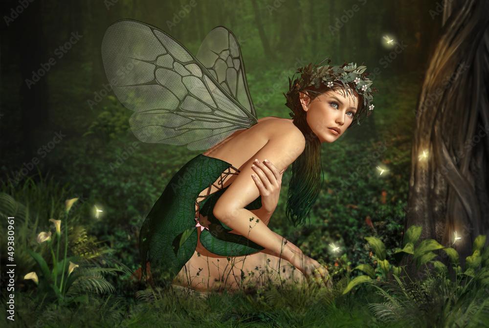 Fototapeta In the Fairy Forest