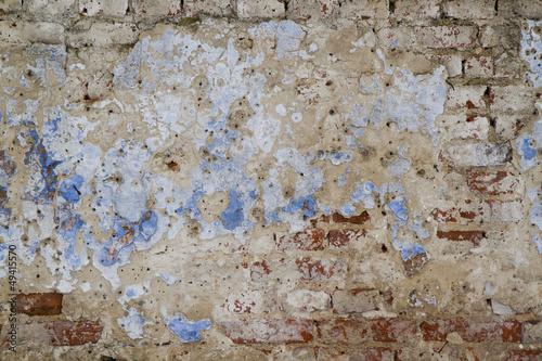 Fototapeta Ściana w winnicy obraz