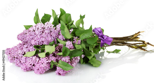 Foto op Canvas Lilac beautiful lilac flowers isolated on white.