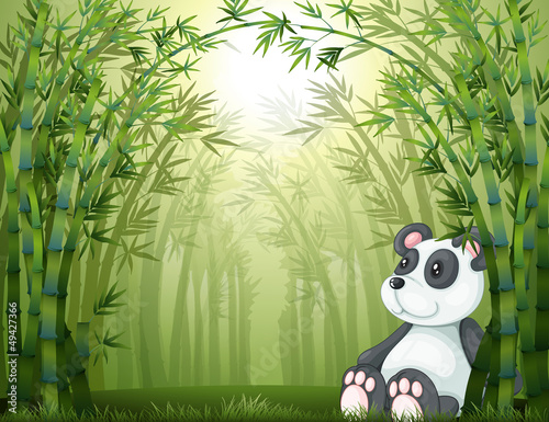 Wall Murals Bears A panda in the bamboo forest