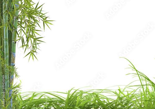 décor asiatique détente bambou herbes - 49436949
