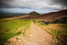 Rural Farm Road In English Cou...