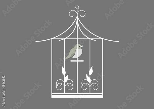 In de dag Vogels in kooien Cage oiseau - fond gris