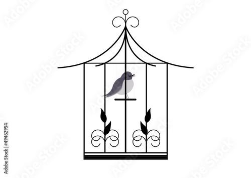 In de dag Vogels in kooien Cage oiseau -