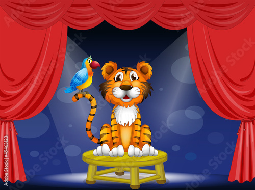 Wall Murals Bears A tiger and a parrot in the circus