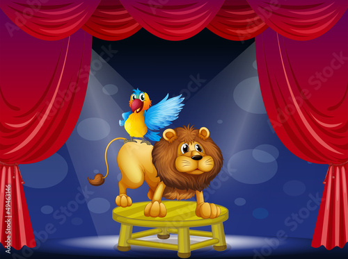 Wall Murals Bears A circus showing the lion and the parrot