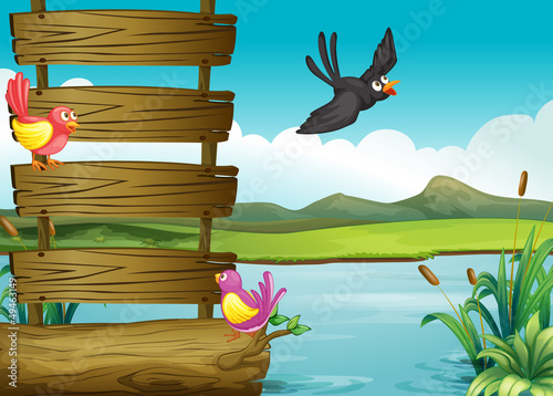 Poster Vogels, bijen Birds near a blank wooden signage