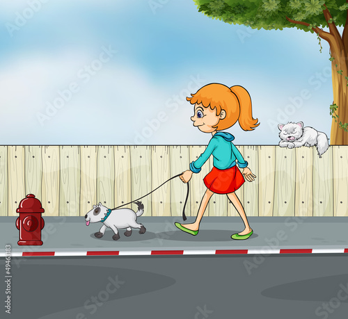 Poster Dogs A girl strolling with her pet