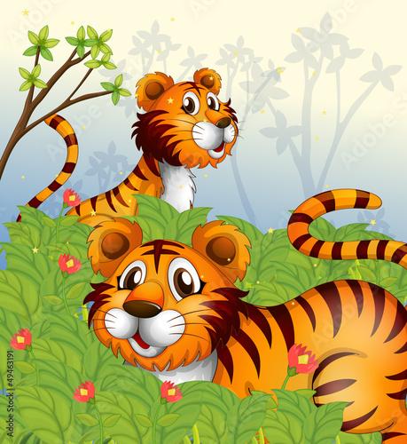 In de dag Vlinders Tigers in the woods