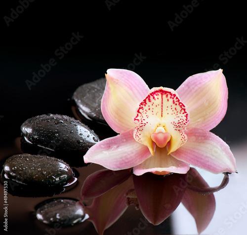 Plissee mit Motiv - Zen Stones and Orchid Flower. Stone Massage
