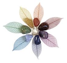 Chakra Crystals On Leaves