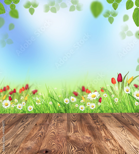 Foto-Stoff - Spring meadow with wooden planks (von Jag_cz)