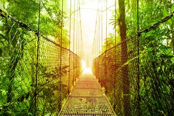 Fototapeta Optyczne powiększenie Arenal Hanging Bridges park of Costa Rica