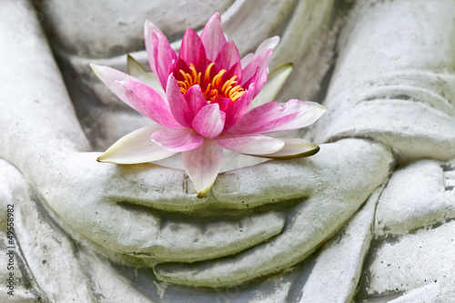 In de dag Lotusbloem Buddha hands holding flower, close up