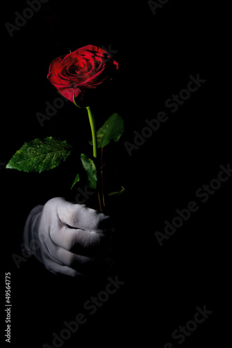 Acrylic Prints Red, black, white white glove, red rose
