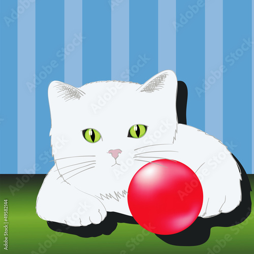 Deurstickers Katten cat