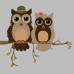 Pair of owls on branch