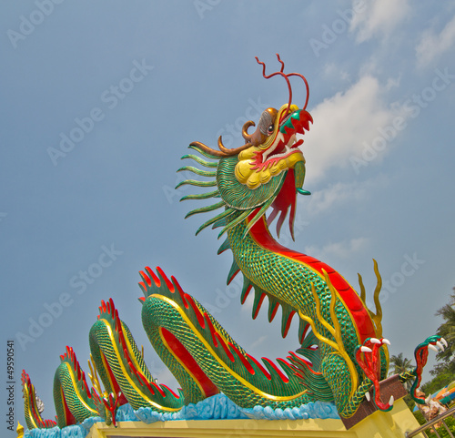 Photo  Beautiful dragon