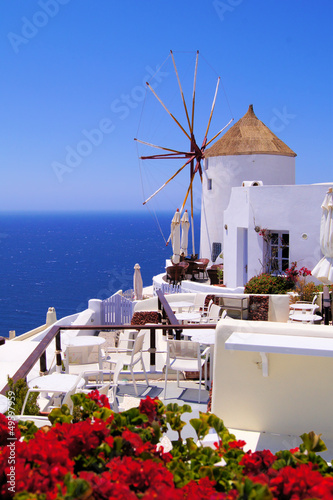 Fototapety, obrazy: Famous windmill of Santorini, Greece with red flowers
