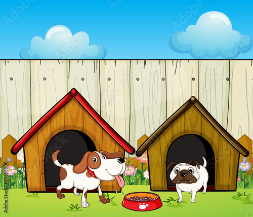 Foto op Canvas Honden Wooden doghouses inside the wooden fence